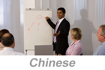 Integrated Systems - Achieving Organizational Excellence (Chinese)