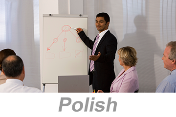 Integrated Systems - Achieving Organizational Excellence (Polish)