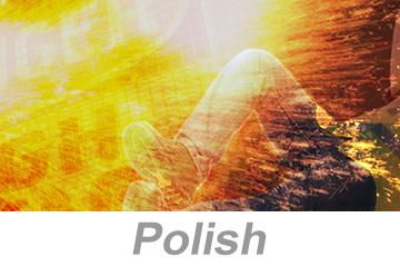 Electrical Arc Flash Awareness - International (Polish)