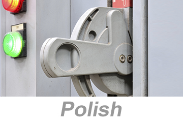 Electrical Safety and Lockout/Tagout - International (Polish)