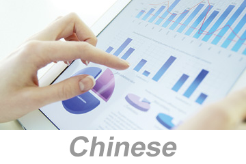 Reporting (Data Entry) - Global (Chinese)