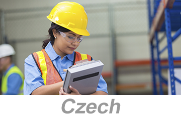 Performing Safety Inspections - Global (Czech)