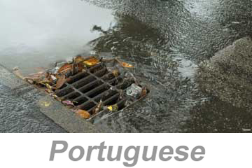Stormwater Pollution Prevention (Portuguese)