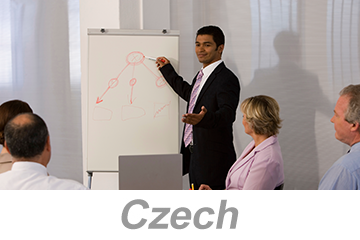 Integrated Systems - Achieving Organizational Excellence (Czech)