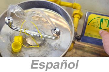 Using Eyewashes and Emergency Showers - International (Spanish)