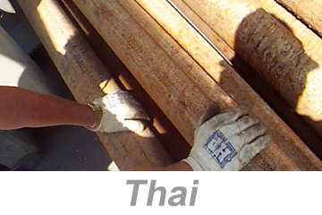 Hand, Wrist and Finger Safety (Thai)