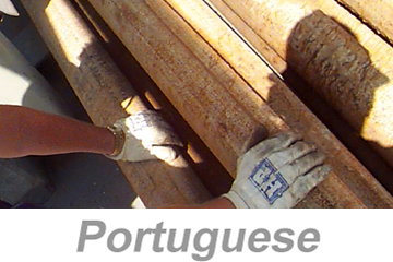 Hand, Wrist and Finger Safety (Portuguese)