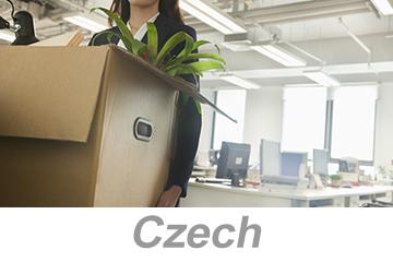 Office Safety - International (Czech)