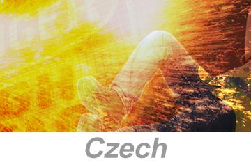 Electrical Arc Flash Awareness - International (Czech)